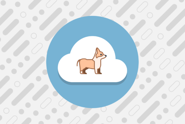 Pet Tracking Salesforce Application